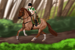 Speedy Competition by Rosela