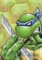 Leonardo sketch card by JLWarner