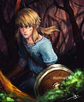 Link - BotW by HashTag13
