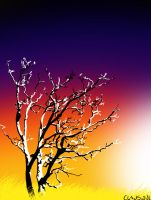 Sunset Tree by kaolincash