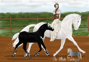 One rider Two horses by The-White-Cottage