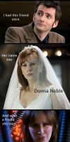 My.Brilliant.Donna by TaiKaze