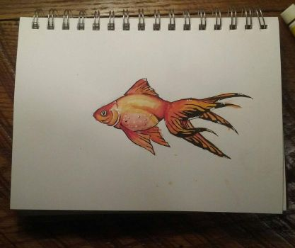 Goldfish Watercolor by Lynxcall