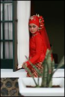 in red by iqbal0904