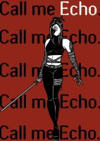 Echo by blindfaith311