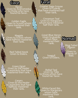 TWW | Feather Chart by Fargonon