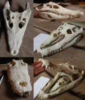 Siamese Croc for sale by Myskullcabinet