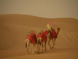 Going somewhere in the desert by keziakos