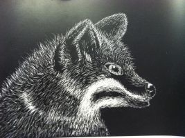 Fox Scratchboard (WIP) by Schuffles