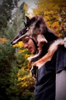 Dingo Skin Headdress by NaturePunk