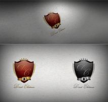 Direct Chateaux logo by Creative-ids