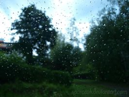 After The Rain by sparcosk