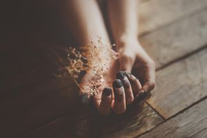 the wounds we have covered ourselves in by Rona-Keller