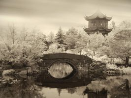 Chinese Garden by hhjjii