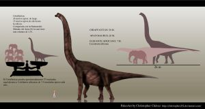 Giraffatitan by Christopher252
