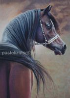Horse Arabian Portrait Brown Pastel by PASTELIZATOR