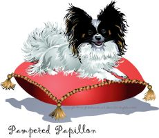 Pampered Papillon by HouseofChabrier