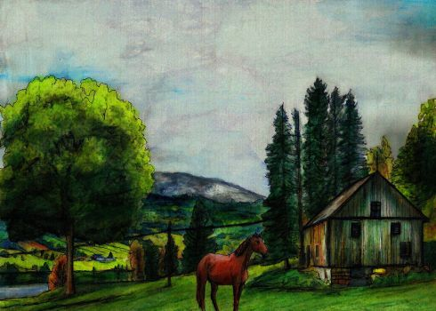 Landscape with a horse overdraw test by elfman83ml