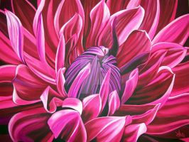 Red Dahlia by jennymacattack