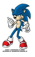 My first Sonic the Hedgehog by Ebonyleopard