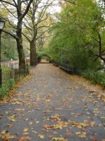Central Park by SarahWolf
