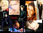 Wall of Gackt by Katherinemoon