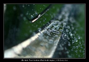 Gran Turismo Raindrops by vbgecko