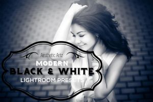 Premium Modern Black and White Lightroom Presets by AestheticArtz