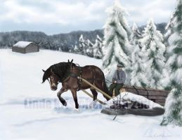 Swedish forestry with horse by SheWolff