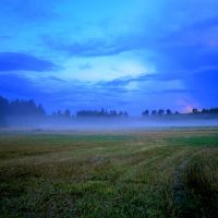 Misty Summer Field by niksuo