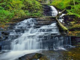 Ricketts Glen State Park 23 by Dracoart-Stock