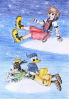 Sora Donald Goofy by NormaLeeInsane