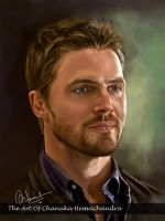Stephen Amell by chanuka30wh