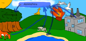 The Carbon Cycle by LegitHerobrine