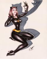 Lindze as Catwoman by SergioCuriel