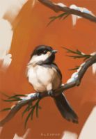 Winter Chickadee by ZaraAlfonso