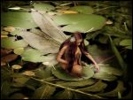 Water Lily Fairy by Iribel