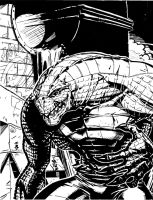 My Killer Croc by lroyburch