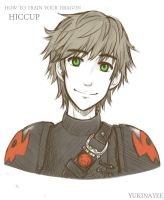 HTTYD2: Hiccup by yukinayee