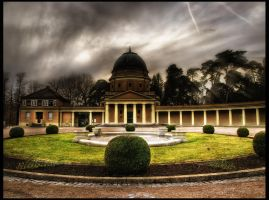 Wood Cemetery Darmstadt II by Riot23