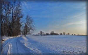 January in Hungary. by magyarilaszlo