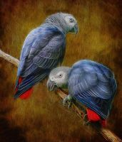 African Parrots For A Princess by KarmeticPeace