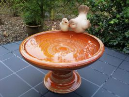 bird drinking bowl by mariezonnetje