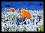 Winter Covers Autumn by TeaPhotography