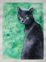 ah, its a wonderful cat life by princetheripper33