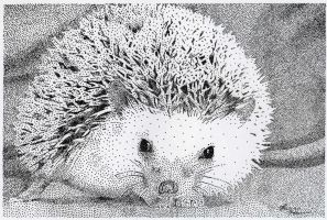 Hedgehog Stippling by Tattoo711
