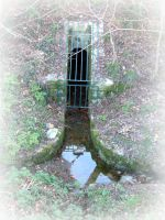 old sewer of Mouchamps by planzman