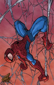 Colors Spider-Man by larken