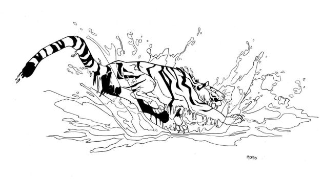 splashing tiger by iktis
