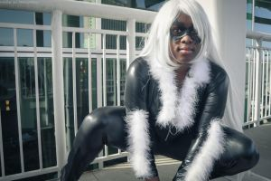 Black Cat - On The Prowl by seethroughcrew